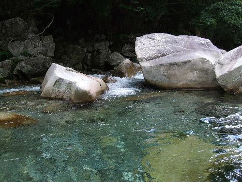 綺麗な水です.jpg